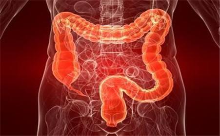 成人肠痉挛的原因有哪些
